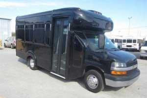 15 Pass. Mini Bus